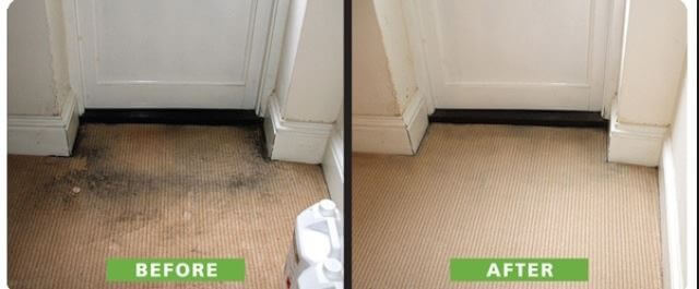 Carpet Upholstery Cleaning In Wrexham Chester